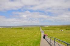 Blick vom Weg zum Wattenmeer